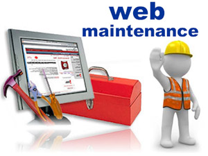 Web site maintenance and updates weekly, monthly or quarterly to meet your needs.